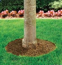 60 recycled rubber mulch tree ring mat