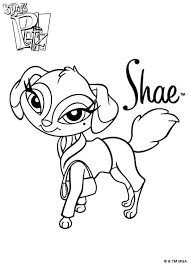 339 coloring images coloring animal coloring