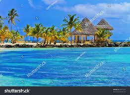 punta cana dominican republic beaches jungle stock photo 65617279