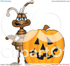 halloween pumpkin cartoons clipart picture of an ant bug mascot cartoon character with a