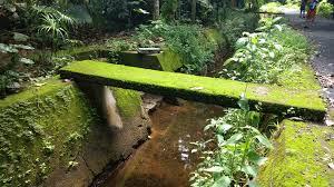 file green bridge velu jpg wikimedia commons