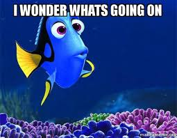 Whats Going On Meme - i wonder whats going on dory from nemo 5 second memory make a meme