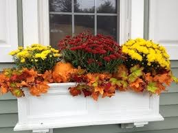best 25 fall flower boxes ideas on pinterest fall window boxes