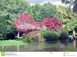 idee deco jardin japonais jardin anglais munich grenoble 1132 9mb us