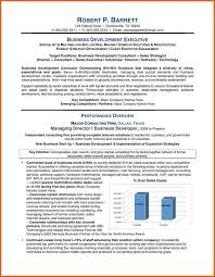 Resume Executive Summary Examples Executive Resume Example Incredible Design Ideas Executive Real