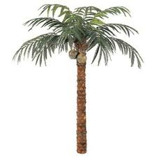 artificial house plants 10 foot coconut palm tree polyvore