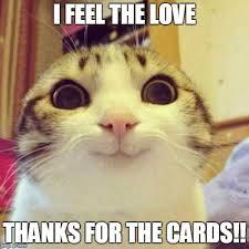 Feel The Love Meme - smiling cat meme imgflip