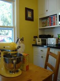 Yellow Kitchen Ideas Cabinet Yellow And Green Kitchens Green Kitchen Cabinets