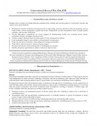 Senior Finance Executive Resume Resume Templates Cfo Sample Resume Cfo Resume Cv Cover Letter 100