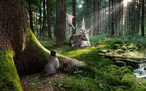 most popular wallpaper fairytale forest 4k most popular wallpapers hd wallpapers hd