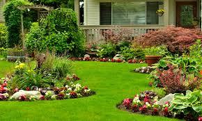 full service lawn care south holland il american lawn