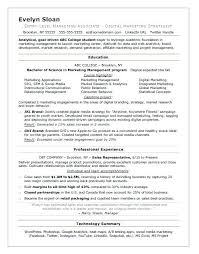 resume sles for no experience students web college student resume template undergraduate student resume