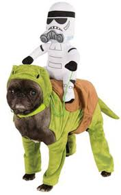 pet halloween costumes uk the empire strikes bark 13 adorable dogs dressed in star wars