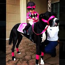 Outstanding Halloween Costumes 19 Couples Costume Ideas Pet Horse Costumes