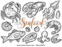 salmon tuna fish steak crab mussels stock vector 664140973