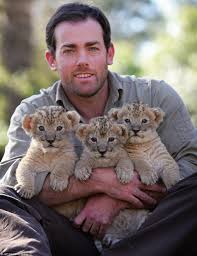 lion keeper u0027 ben britton raising a pride of cubs in his lounge