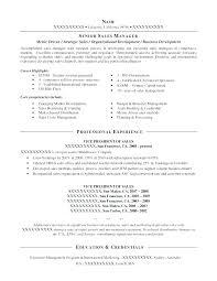 resume objective sles management business development resume objective
