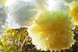 Yellow Pom Pom Flowers - 35 tissue paper pom poms guide patterns