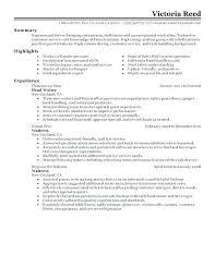 server resume exles server waitress resume waiter resume template excellent ideas server