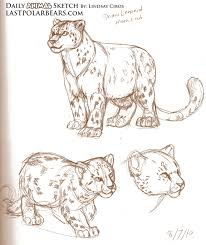 daily animal sketch u2013 snow leopards u2013 last of the polar bears