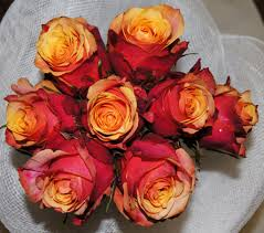 Same Day Flowers Same Day Flowers U0026 Gifts Delivery In Gta Within Toronto Flowers