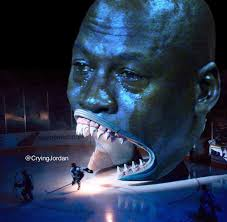 San Jose Sharks Meme - i feel really bad for the san jose sharks their fans ign boards