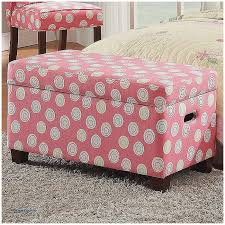 Pink Storage Ottoman Storage Benches And Nightstands Beautiful Pink Storage Ottoman