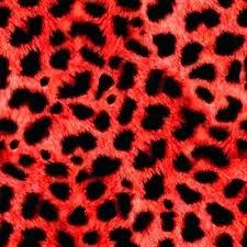 cheetah print party supplies colorful leopard print bright animal prints if colorful animal