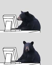 Patient Bear Meme - mfw the patient bear meme is suddenly a thing patient bear bear