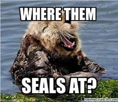Sea Otter Meme - otters