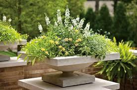 container garden ideas innovative manificent home interior