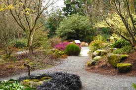 Botanical Garden Bellevue Bellevue Botanical Garden Get Inspired Nature Me