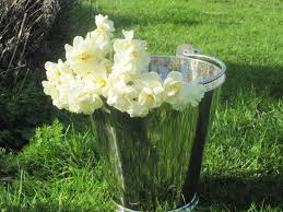 How To Revive Flowers In A Vase Maximising The Vase Life Of Your Cut Flowers Sarah Raven