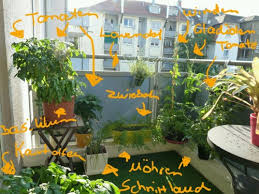 gem se pflanzen balkon gemüse anbauen auf dem balkon über den balkongarten