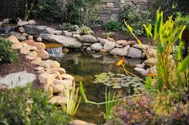 Backyard Garden Ponds 37 Backyard Pond Ideas U0026 Designs Pictures