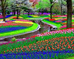 beautiful flower garden in the holland photos of beautiful