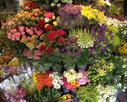 flower shops in san diego florist downtown san diego ca local florist in san diego ca