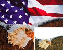 Bald Eagle On Flag Bald Eagle U0026 Flag Dd13 003 Diamond Dotz