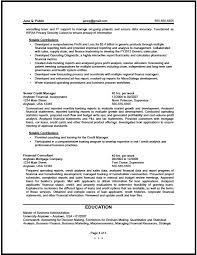 Finance Resume Examples by Federal Financial Analyst Resume Sample The Resume Clinic