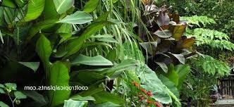 best of diy garden design ideas diy garden design diy garden