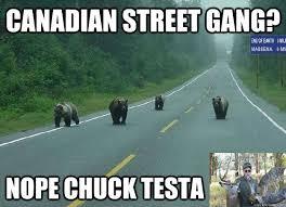 Nope Meme - canadian street gang nope chuck testa nope quickmeme