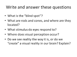 What Is The Blind Spot How We Make Sense Of What We See Ppt Video Online Download