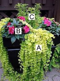 Floral Vases And Containers Container Flower Gardening Ideas Lots Of Different Flower Combos