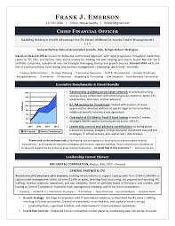 Executive Resume Format Template Examples Of Executive Resumes Cio Sample Resume Cto Sample