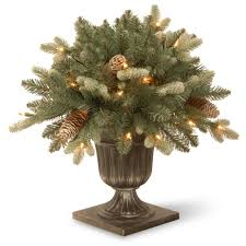 national tree company 1 5 ft copenhagen blue spruce porch