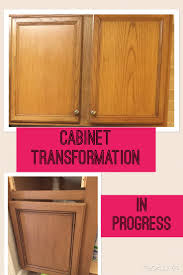Kitchen Cabinet Transformations 52 Best Kitchen Cabinets Images On Pinterest Kitchen Ideas