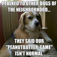 dog peanut butter i talked to other dogs of the neighborhood they said our