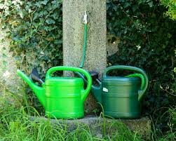 how to find the best watering cans reviews sproutabl