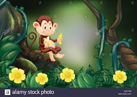 green monkey stock vector images alamy