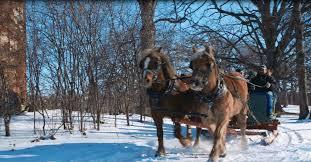 sleigh rides winter at apple holler
